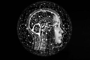 cerebro reptil