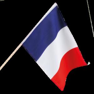 Francia OVNI