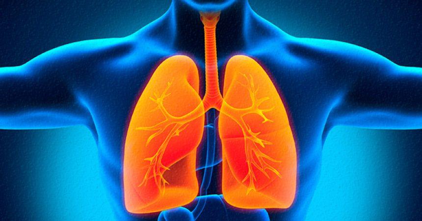 Pulmones y garganta con tos